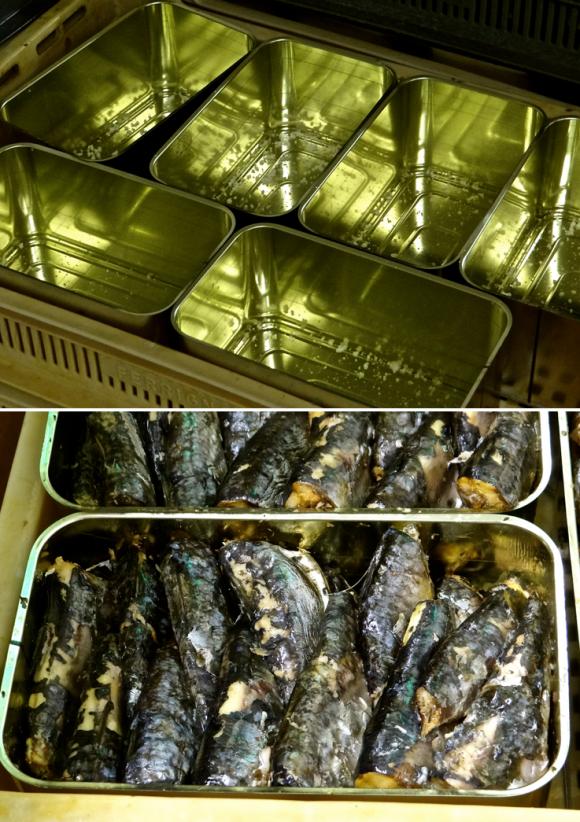 alimentation,pêche